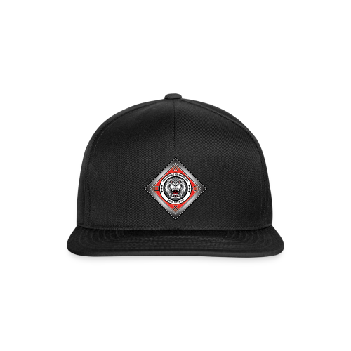 2on1 ry Snapback Cap  - Snapback Cap