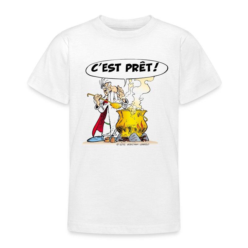 Tee shirt asterix obelix miraculix potion magique - Code promo berceau magique frais port ...