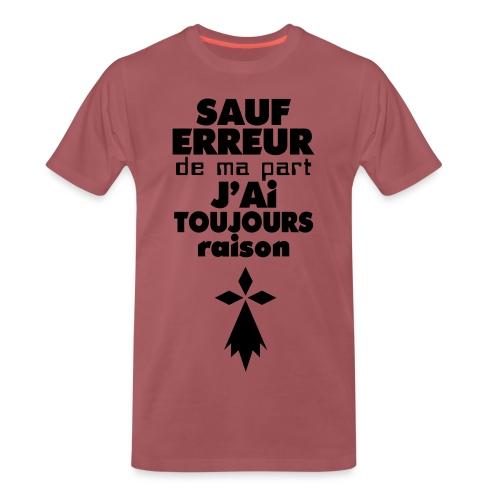 tee-shirt breton - T-shirt Premium Homme