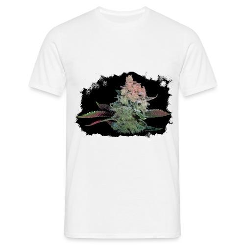 Pflänzchen - Männer T-Shirt