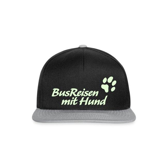 Busreisen-mit-Hund