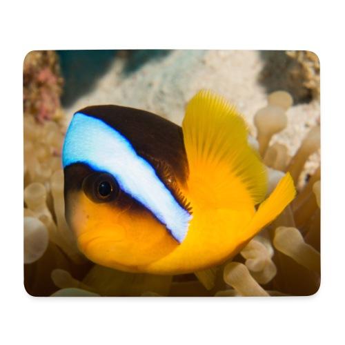 Tapis de souris Clownfish - Tapis de souris (format paysage)