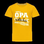 T-Shirts ~ Kinder Premium T-Shirt ~ Wenns da Opa ned richtn kau - bringts kana zaum.