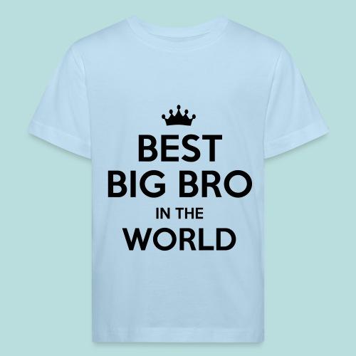Best big bro T-shirt - Ekologisk T-shirt barn