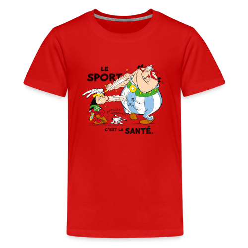 Asterix & Obelix -  Asterix and Obelix boxing - T-shirt Premium Ado