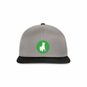 Snapback TLMSF - Casquette snapback