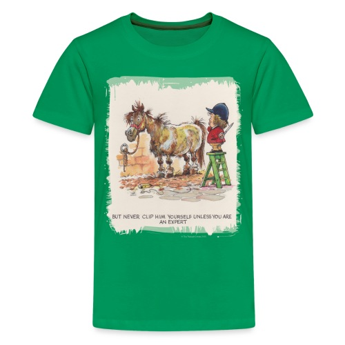 Thelwell Pony with hairdresser - Teenager Premium T-Shirt