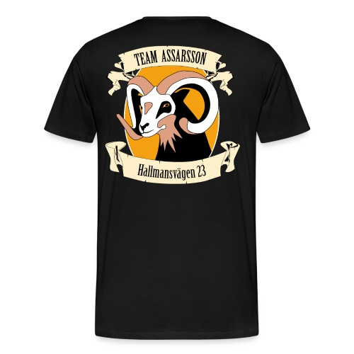 Team Assarsson 2016, Herr - Premium-T-shirt herr