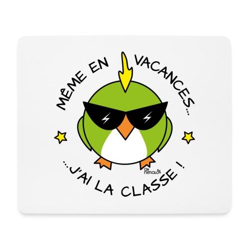 Oiseau Lunettes, Cadeau Instit, J'ai la Classe