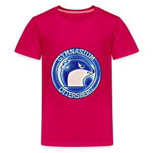 Pink Blue Vintage - Teenager Premium T-Shirt