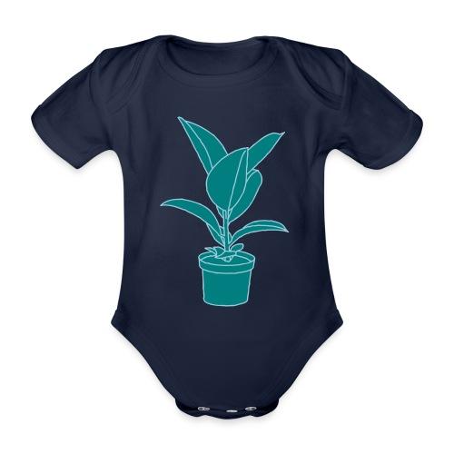 GUMMIBAUM Zimmerpflanze 2 - Baby Bio-Kurzarm-Body