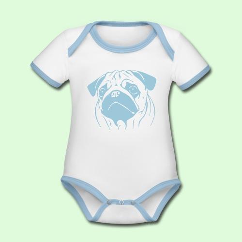 Pug, le Carlin - Body Bébé bio contrasté manches courtes