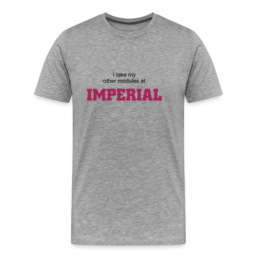 I take my other modules at Imperial (grey) - Men's Premium T-Shirt