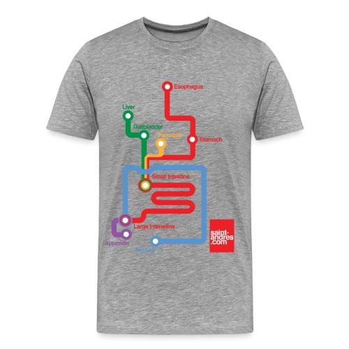 digestive-system man classic tshirt grey - Maglietta Premium da uomo