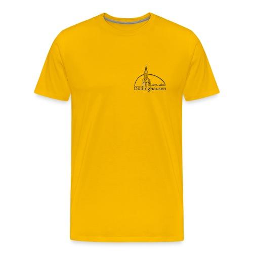 Männer T-shirt klassisch: 900 Jahre - Männer Premium T-Shirt