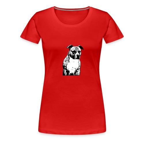 dominictodoynada@gmail.com - Women's Premium T-Shirt