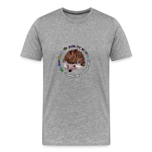 Graues Shirt mit bunter Schrift (klassisch) - Männer Premium T-Shirt