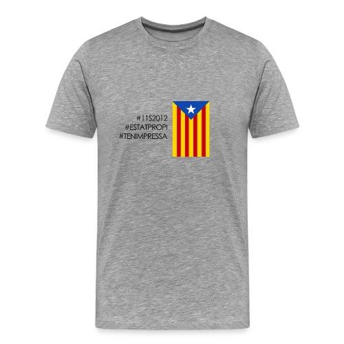 #11S2012 - Men's Premium T-Shirt
