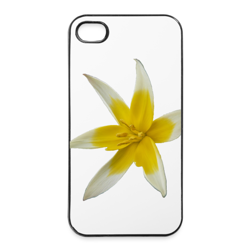 iPhone 4/4s Hard Case - Design Wild Tulip Macro by Amahy - iPhone 4/4s Hard Case