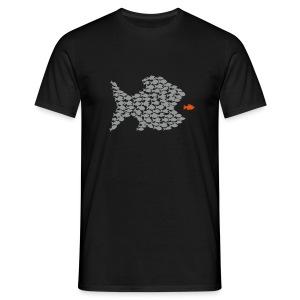 fisch fische schwarm angler angeln demokratie fressen evolution beute räuber jagd jäger kollektiv be
