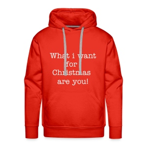 Mannensweater what I want for Christmas are you - Mannen Premium hoodie