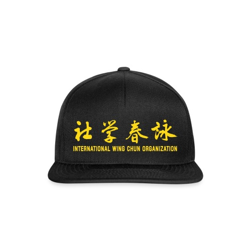 Black Baseball Cap - Snapback Cap