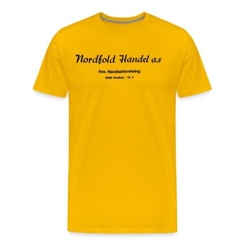 Herre t-skjorte horisontal - Premium T-skjorte for menn