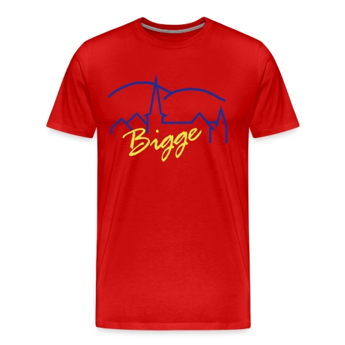 T-Shirt Bigge bunt - Männer Premium T-Shirt