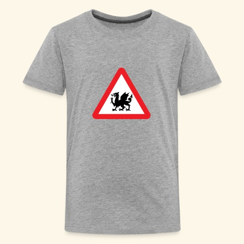Beware Dragons! - Teenage Premium T-Shirt