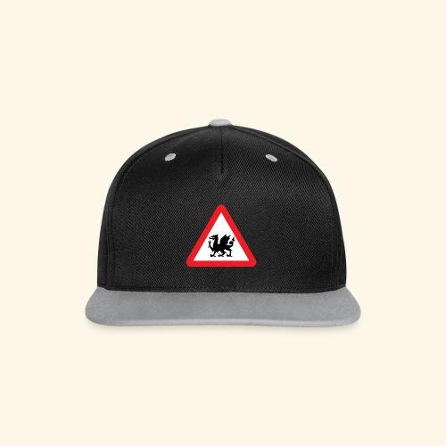 Dragon cap - Contrast Snapback Cap