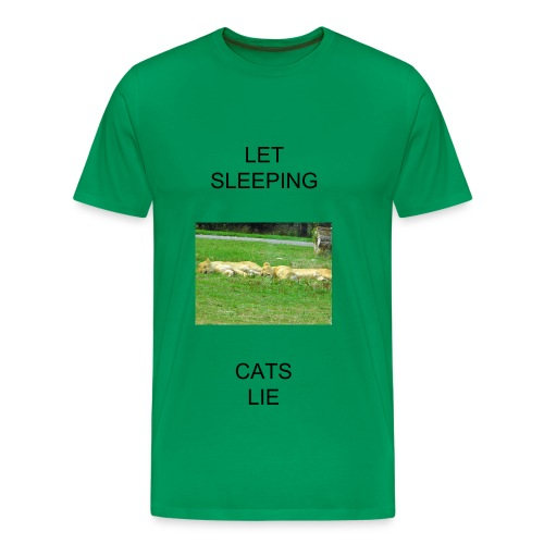 let sleeping cats lie - Men's Premium T-Shirt