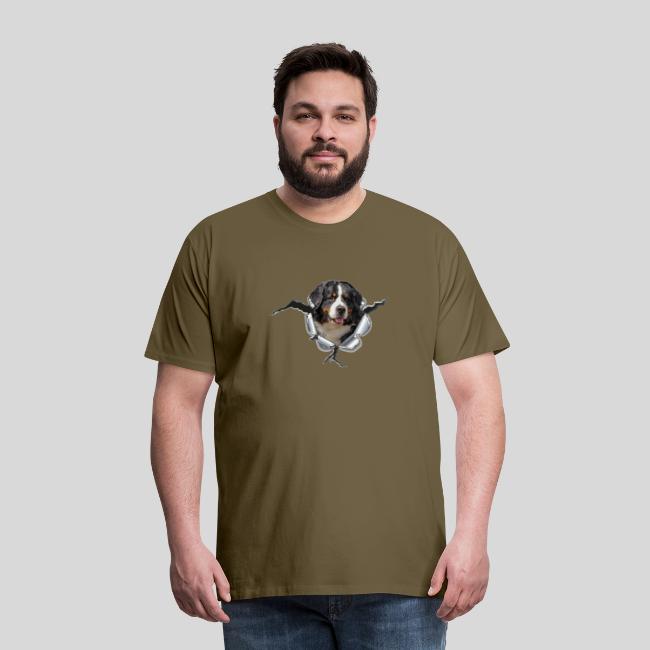 Berner Sennenhund im *Metall-Loch*