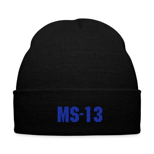 MS-13 hue - Winterhue