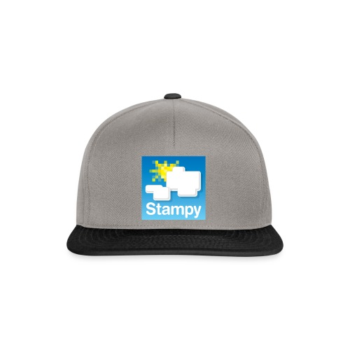 Stampy Logo - Child's T-shirt - Snapback Cap