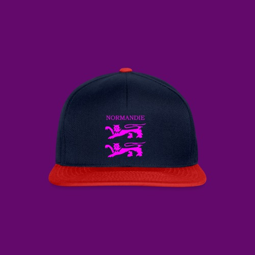TEE SHIRT NORMANDIE LIONS ROSES - Casquette snapback