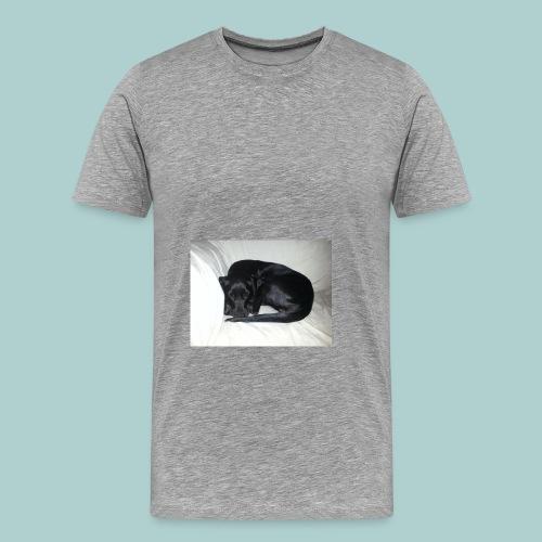 Kaline-Hoodie: Schlafender Hund II - Männer Premium T-Shirt