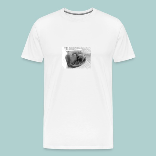 Kaline-Hoodie: Schlafender Hund - Männer Premium T-Shirt