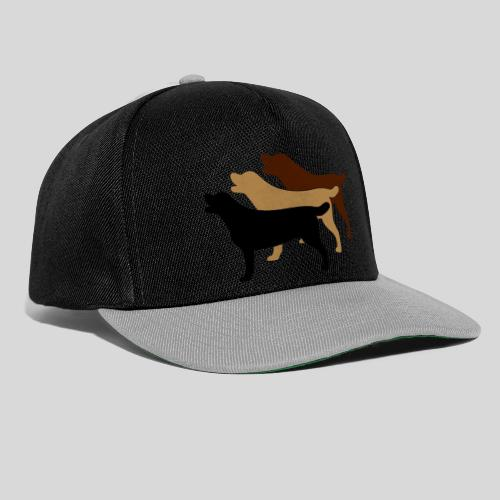 3 gelbe Labrador Retriever - Snapback Cap