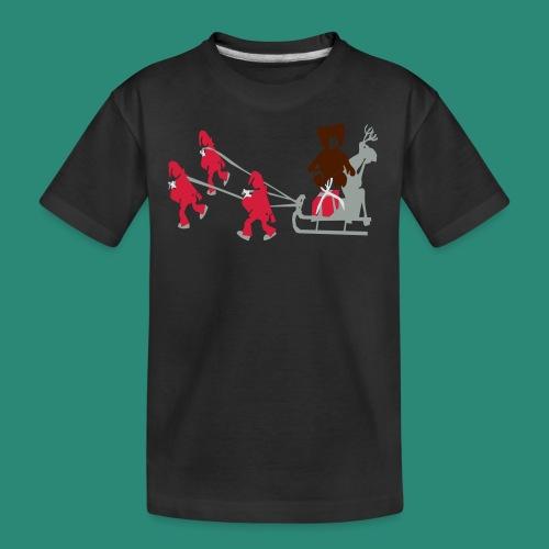 Frauen T-Shirt anthrazit Wichtelzeit - Teenager Premium Bio T-Shirt