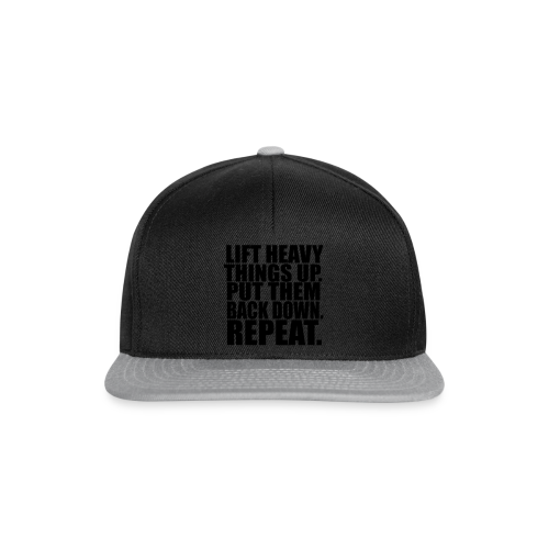 Lift Things up Put Them Backd Down - Snapback Cap