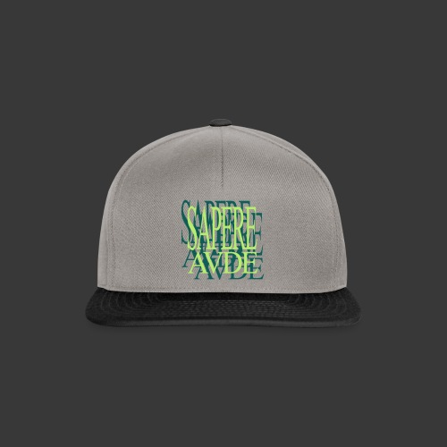 SAPERE AUDE - Snapback Cap