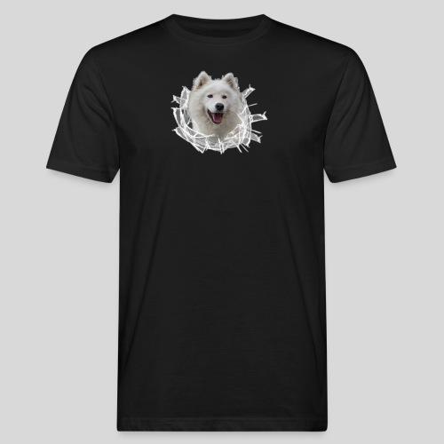 Samojede im Glasloch - Männer Bio-T-Shirt