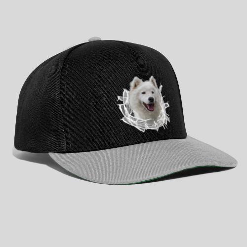 Samojede im Glasloch - Snapback Cap