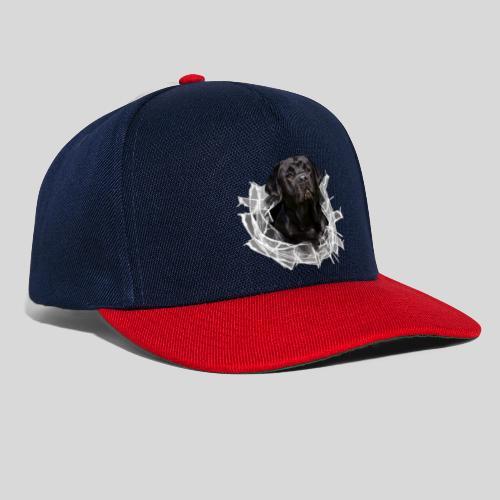 Labrador Schwarz im Glasloch - Snapback Cap