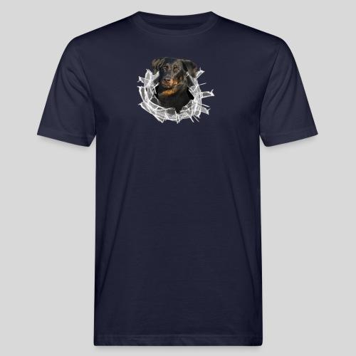 Beauceron im Glasloch - Männer Bio-T-Shirt