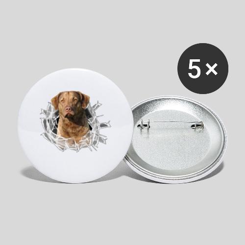 Chessie im Glasloch - Buttons klein 25 mm (5er Pack)