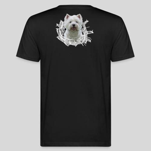 West Highland Terrier im Glasloch - Männer Bio-T-Shirt