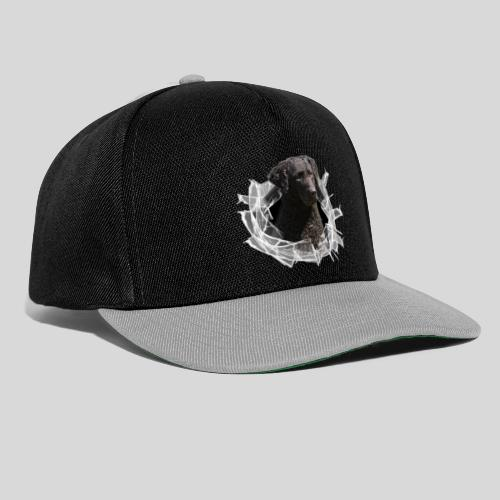 Curly Coated Black im Glasloch - Snapback Cap