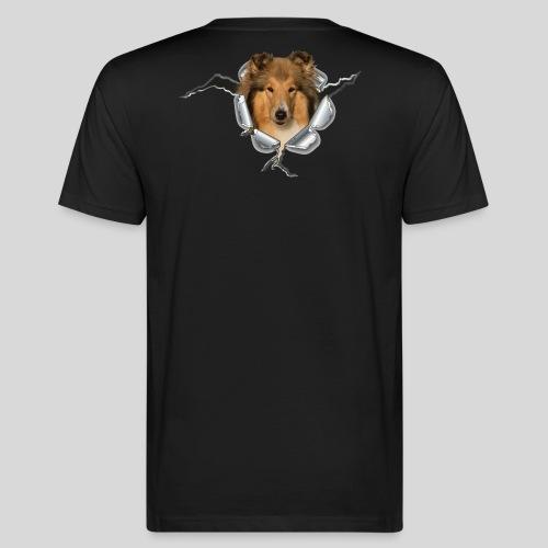 Collie (1) im Metall-Loch - Männer Bio-T-Shirt