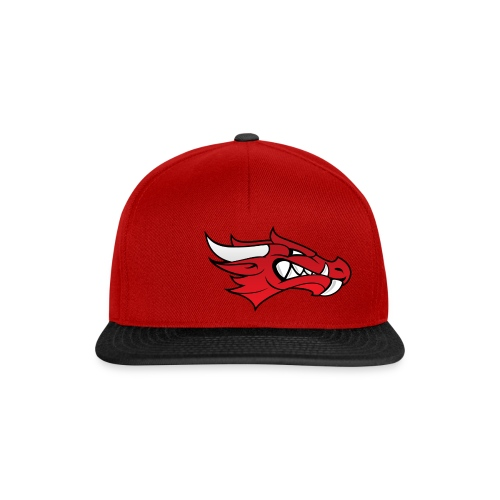Small Dragon Logo - Snapback Cap